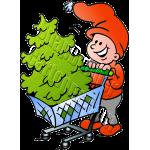 Christmas Elf Tree Shopping